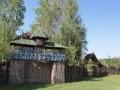 2.Galeria Leśna w Bora Zdrój