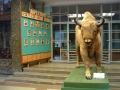 1.Białoruskie muzeum