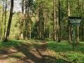 19.Hajnówkę otaczają rezerwaty przyrody chroniące unikatową naturę