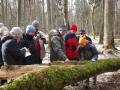 2.Szkolenie – po co martwe drzewa
