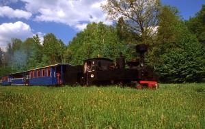 Waskotorowa kolejka lesna w Puszczy Bialowieskiej