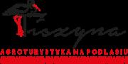 logo-tiszyna