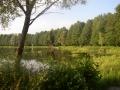 10.śródleśna osada Topiło - miejsce postojowe kolejki wąskotorowej
